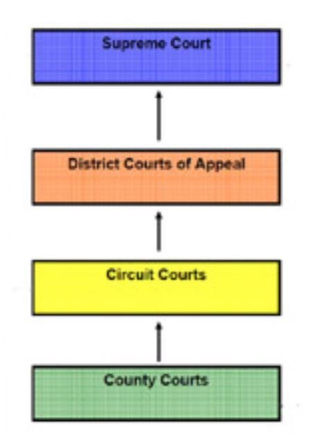 flow chart of appellate jurisdiction in florida